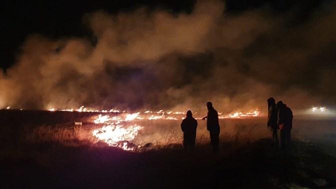 Meer as 4 200 #veldbrande in VS in Junie aangeteken | News Article