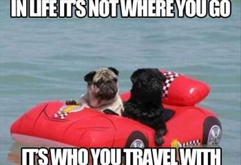 -TBB- Woord vir Woord: Travel! | News Article