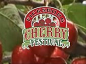 Cherry Festival 2017 - Meet the organiser Gavin  | Blog Post