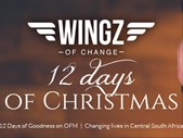 Just Plain Drive: 12 Days of Christmas - Day 5 | Blog Post