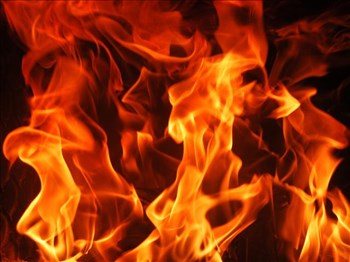 Police investigating arson | News Article