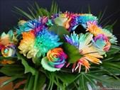 Saturday Express: Feature Hobby -  Flower art. | Blog Post