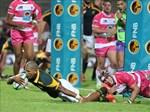 Roux praises Junior Springbok character | News Article