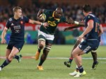 Mohoje ruled out for 3rd Test | News Article