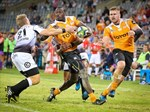 """Bookies fancy Cheetahs chances to win the """"Pro14""""   News Article"""