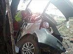 Twee dood nadat motor teen boom bots | News Article