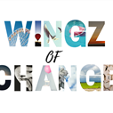 Just Plain Drive: The Wingz of Change    Blog Post
