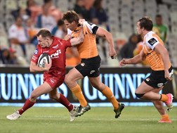Cheetahs fly out to Wales on Sunday  | News Article