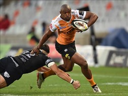Mapimpi and Nche set for Bok debuts | News Article