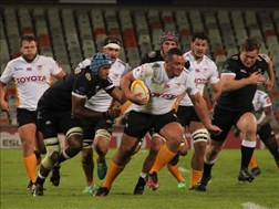 It's crunch time for the Free State XV | News Article