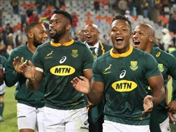 Springboks still have plenty to play for | News Article