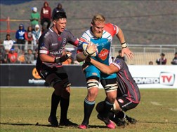 Revenge on the cards for the Griquas | News Article