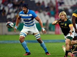 Marx and Flo back, Willemse on debut | News Article