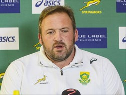 Bok bench to play pivotal role | News Article