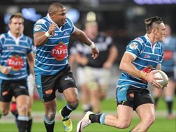 Griquas to take positives from single round Currie Cup | News Article