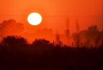 Brandgevaar in Noord-Kaap groot weens hittegolftoestande, wind en min reën | News Article
