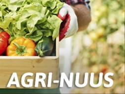Landbounuus-podcast: Private bydraes beloof VS landbouherlewing | News Article