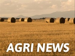 Agri News Podcast: Fifty households receive title deeds from President | News Article