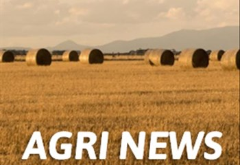 Agri News Podcast: Food security in FS tackled | News Article