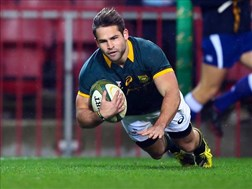 Nine overseas players at Bok alignment camp | News Article