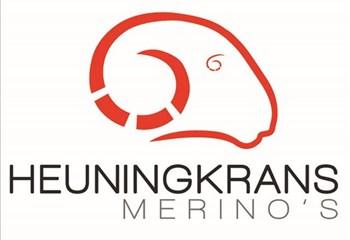 Goeie pryse word behaal op Heuningkrans Merino-veiling | News Article