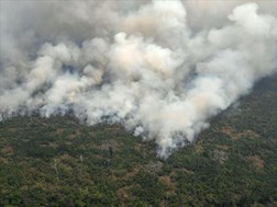 Hundreds of new fires in Brazil as outrage over Amazon grows | News Article