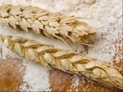Senwes Grainlink: Hier is jou jongste Safex-pryse   News Article