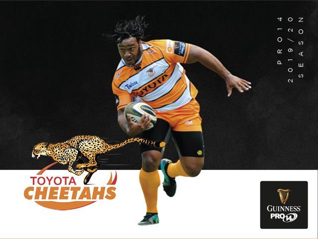 Toyota Cheetahs Guinness Pro14