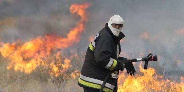 Firefighters battle veld fires in FS | News Article