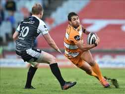 Good news for the Cheetahs on the injury front   News Article