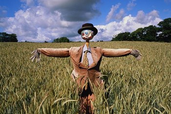 Weird Wide Web - Scarecrows to fight off Covid-19?!   Blog Post
