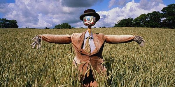 Weird Wide Web - Scarecrows to fight off Covid-19?! | News Article