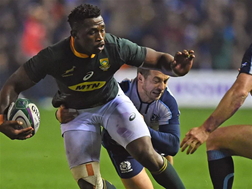 Scotland to host Boks in 2021   News Article