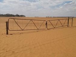 #SADroogte: Herprioritiseer regeringsgeld vir droogtehulp, pleit NK-boere | News Article