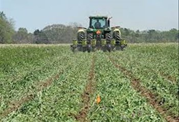 Land Expropriation discussed in Bfn | News Article