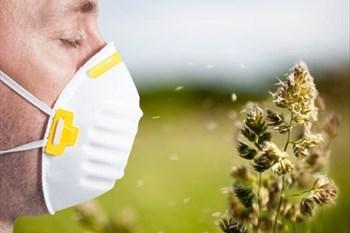 Your Local Pollen Report - 27 Mar 2020   Blog Post