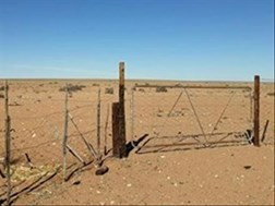 Drought relief was pledged to Northern Cape, says department | News Article