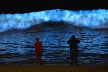 Light-producing plankton causing glowing waves!    Blog Post