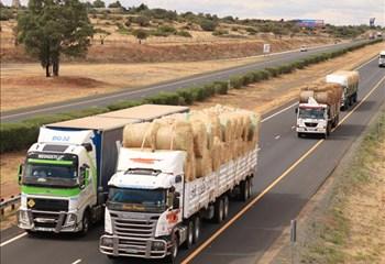 Boere Droogtehulp SA gaan onverpoos voort met hulpverlening aan boere  | News Article