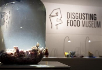 Weird Wide Web - Disgusting Food Museum  | News Article