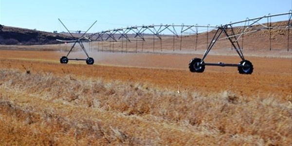 Main agricultural stories on OFM News   News Article