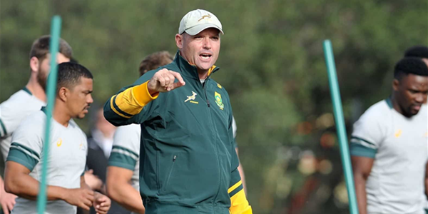Alignment camps a reality check for Springboks | News Article