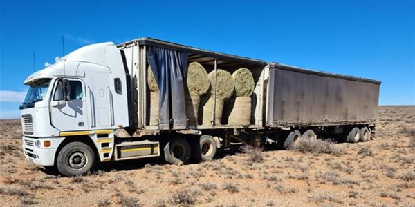 #Droogtehulp: Boere steeds in nood | News Article