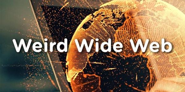 "Weird Wide Web - A ""railing"" record   News Article"