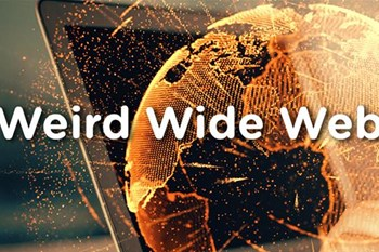 Weird Wide Web - Free food | Blog Post