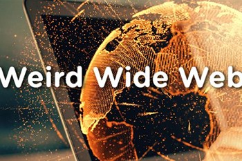 Weird Wide Web - Take away with spice | Blog Post