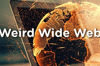 Weird Wide Web - Act your shoe size | Blog Post