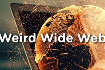 Weird Wide Web - Science is fun | Blog Post