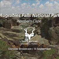 Wild Weekend Live from Augrabies Falls