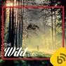 The Wild Blog